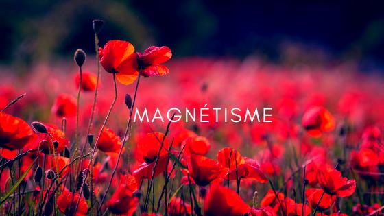 magnetisme energetique